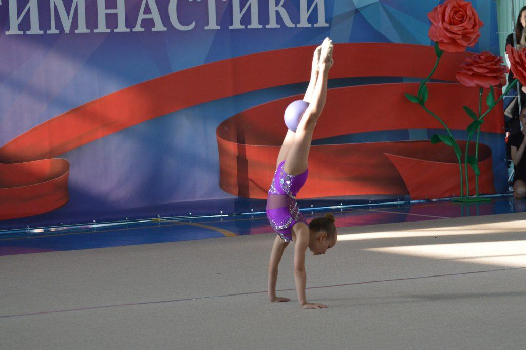 Федерации художественной гимнастики ДНР — быть!